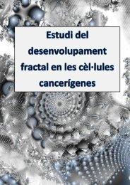 2.4 classificació dels fractals - Premis Universitat de Vic als millors ...
