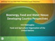 Irini Maltsoglou Food and Agriculture Organization of the United ...