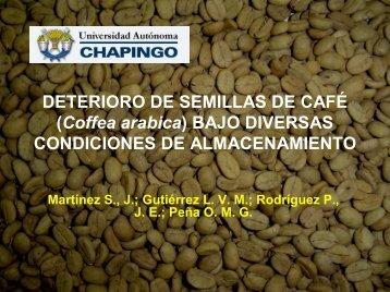 DETERIORO DE SEMILLAS DE CAFÉ (Coffea arabica ... - CEDAF