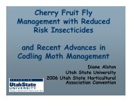 Cherry Fruit Fly Management with Reduced Risk Insecticides and ...