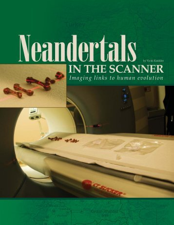 Neandertals in the scanner - Mallinckrodt Institute of Radiology ...