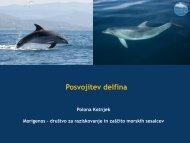 Posvoji delfina - Zavod RS za varstvo narave