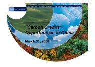 """""""Carbon Credits"""" Opportunities in China"""