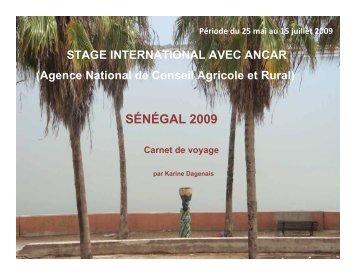 Karine Dagenais - Faculté des sciences sociales