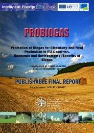 Final Publishable Report