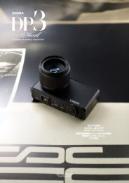 SIGMA DP3 Merrill brochure 2013