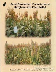 Sorghum Root and Stalk Rots - Agropedia