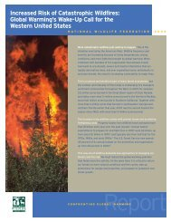 Increased Risk of Catastrophic Wildfires - Climate Information ...