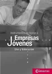Instrumentos de apoyo a empresas jóvenes - Emekin