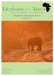 Elephant Tales Newsletter Issue 17 - Memphis Zoo