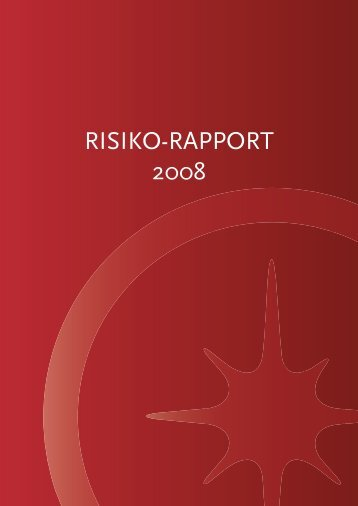 Risikorapport 2008 - Spar Nord