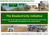 Bioelectricity - Initiative - Cogen