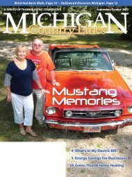 Thumb ElEcTric coopEraTivE - Michigan Country Lines Magazine