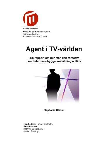 Ladda ner rapporten här. - Webzone K3 - Malmö högskola