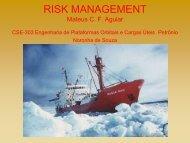 RISK MANAGEMENT CSE-303 Plataformas Orbitais Petronio ... - Inpe