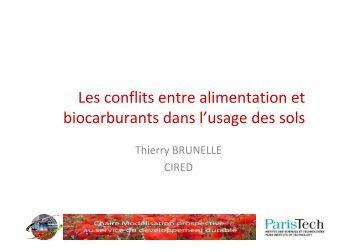 Les conflits entre alimentation et biocarburants dans l'usage des sols