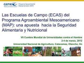 CATIE - Costa Rica - Universidad Nacional de Agricultura