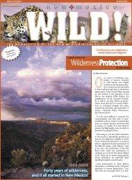 WildernessProtection - New Mexico Wilderness Alliance
