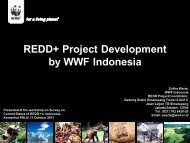 REDD+ Project Development by WWF Indonesia - Forest Climate ...