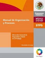 Manual de Organización y Procesos de la Dirección General de ...