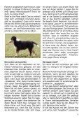 Heft 5/2010 - bei Hunde-logisch.de - Page 5