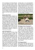 Heft 5/2010 - bei Hunde-logisch.de - Page 6