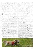 Heft 5/2010 - bei Hunde-logisch.de - Page 7