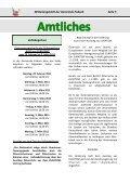 Ausgabe 1 / Februar 2011 - Gemeinde Eisbach - Page 5
