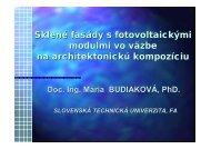 04 Budiakova