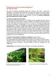 Plantes grimpantes et compagnies.pdf - rts.ch