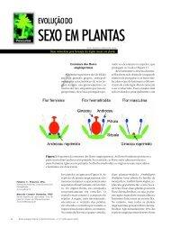 SEXO EM PLANTAS - Biotecnologia