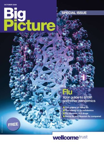 Big Picture on Influenza - Wellcome Trust