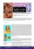 Dentes e crânios humanos fósseis do Garrincho (Brasil) - Fundação ... - Page 6