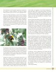 Biosafety: Biosafety: - Convention on Biological Diversity - Page 5