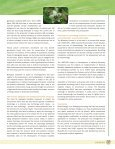 Biosafety: Biosafety: - Convention on Biological Diversity - Page 7