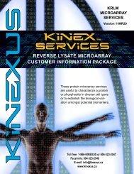 download the KRLM Lysate Array Customer Info Package - Kinexus ...