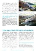 fish-fact 16 - Fair Fish - Page 3