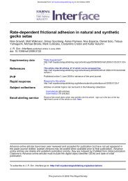 Rate-dependent frictional adhesion in natural and synthetic ...friction ...