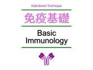 BC basic - from big bang