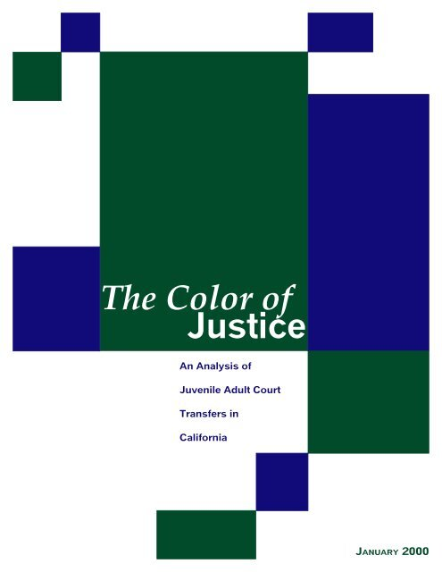 The Color Of Justice Center For Childrens Law And Policy