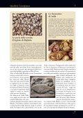 Lunigiana Qualità - Aicod - Page 7