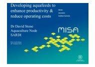 Dr David Stone_MISA symposia