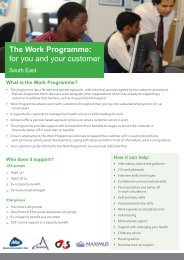 The Work Programme: for you and your customer - DrugScope