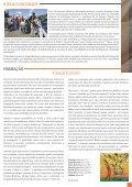Informativo 555.pdf - PARóQUIA NOSSA SENHORA RAINHA - Page 3