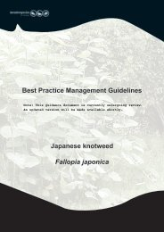 Best Practice Management Guidelines Japanese knotweed Fallopia ...