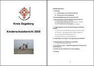 Kinderschutzbericht Se 2009 1 - Die Linke, Kreisverband Segeberg