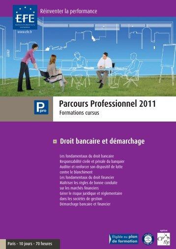 Parcours Professionnel 2011 - Efe