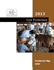 Cow-Protection