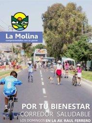 Diapositiva 1 - Municipalidad de La Molina