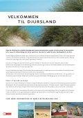 piraten - Djursland - Page 2